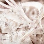 少年と鷲(2)